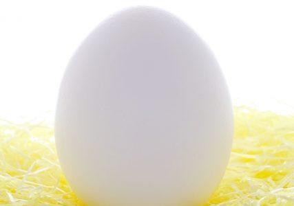 卵のタンパク質の吸収の良い食べ方!1個の黄身と白身の成分や含有量は?