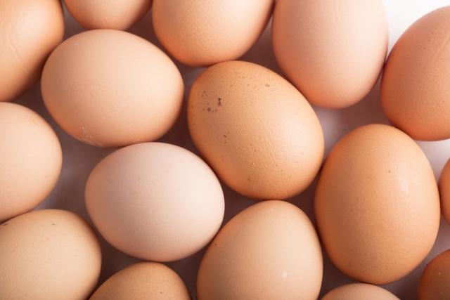 卵 タンパク質 吸収
